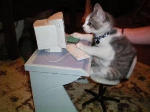 猫のパソコン